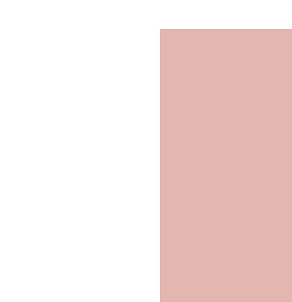 fond-rose-droite